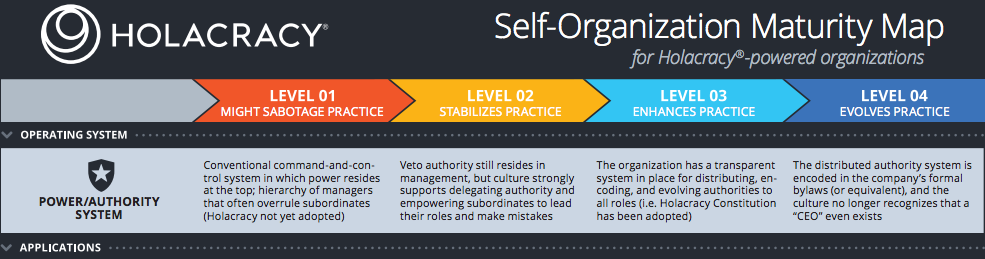 self organization maturity map   enlivening edge