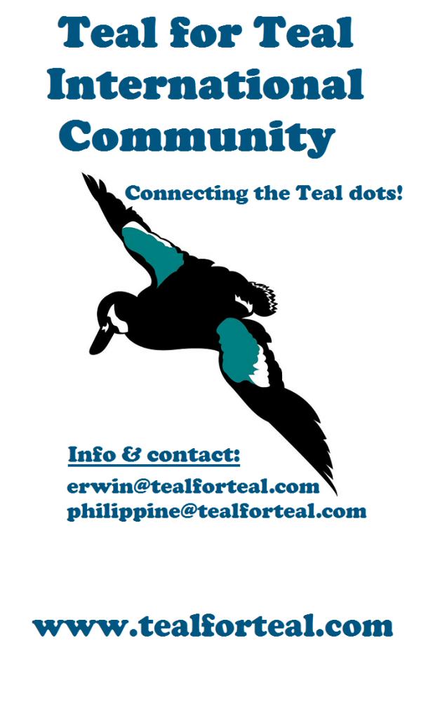 teal for teal international banner2