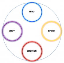 4-human-attributes