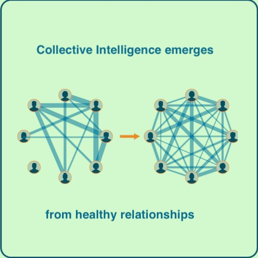 Collective Intelligence emerges from healthy relationships